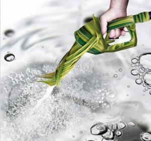 Quais serão os combustíveis alternativos?